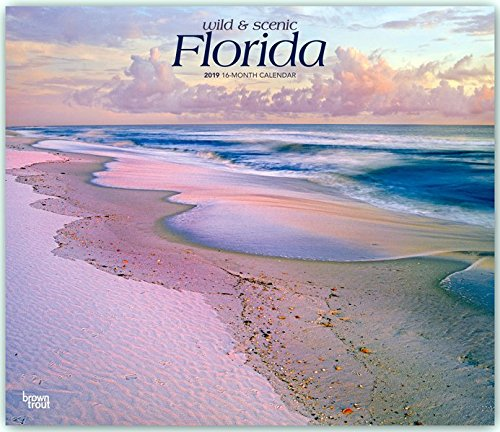 Florida, Wild & Scenic 2019 12 x 14 Inch Monthly Deluxe Wall Calendar, USA United States of America Southeast State Nature