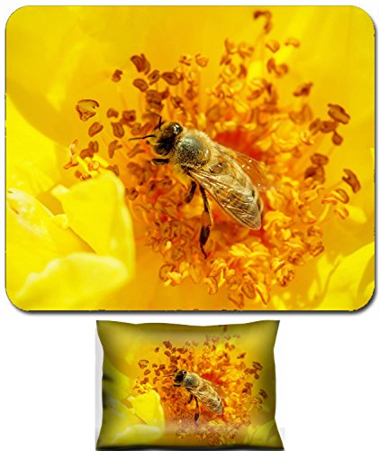 Liili Mouse Wrist Rest and Small Mousepad Set, 2pc Wrist Support ID: 27690273 Honeybee Apis mellifera pollinates a yellow rose Macro photo ()