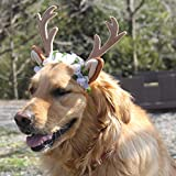Bascolor Pet Costume Antlers Headbands with Ears Adjustable Flexible for Dogs Cats Various Size Halloween Christmas Festival Costumes M