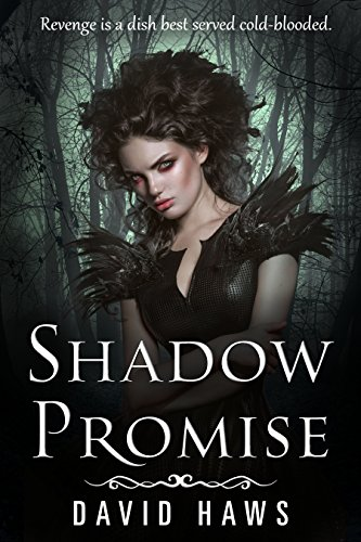 Shadow Promise (Shadow Sport Book 2)