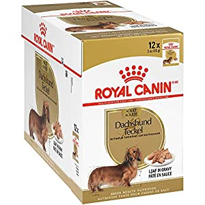 Royal Canin Breed Health Nutrition Dachshund Wet Dog Food