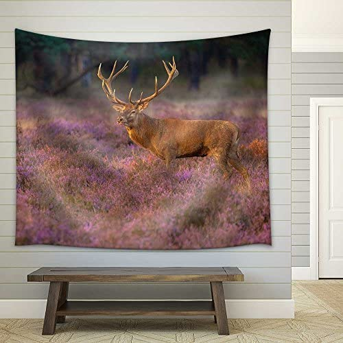 Male Red Deer (Cervus Elaphus) with Giant Antlers During Mating Season on the Hoge Veluwe Netherlands Fabric Wall