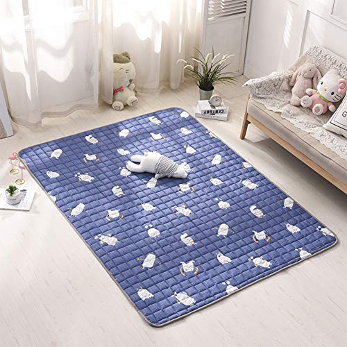 GDZFY Anti-mite Anti-Bacterial Mattress,Foldable Futon Tatami Mattress,Children Crawling mat Baby Play mat Living Room Bedroom mat Area Rug-C 150x200cm(59x79inch) ()