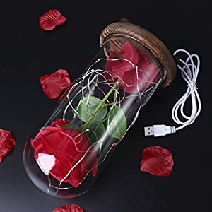 LEDMOMO Red Silk Rose and Led Light with Fallen Petals in a Glass Dome on A Wooden Base Artificial Rose Flowers USB Night Light Gift for Valentine's Day Anniversary Wedding Birthday 9