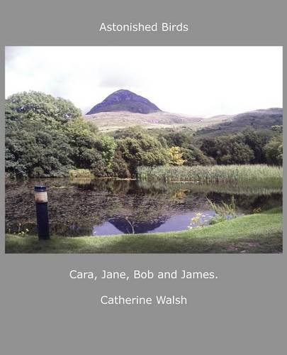 Read Online Astonished Birds Cara, Jane, Bob and James. pdf