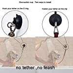 YYST-Suction-Cup-Hook-Cleat-for-Pet-Dog-cat-Bathtub-Shower-Bathing-Grooming-Tether-No-Leash