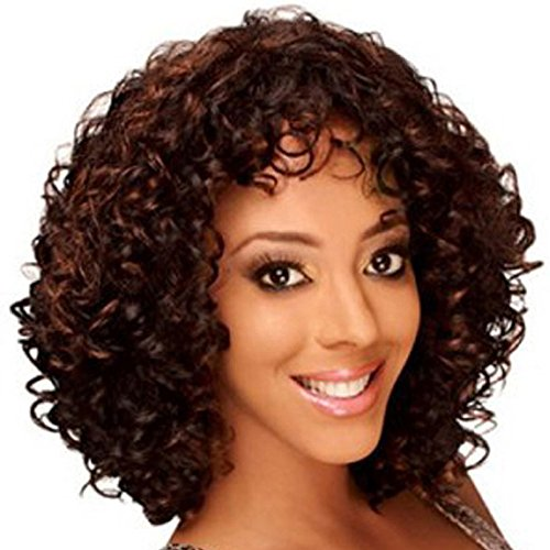 QianBaiHui Short Kinky Curly Wigs for Black Women - American African Women's Wig Heat Resistant Synthetic Hair Fashion Full Wigs (Brown-4) by QianBaiHui