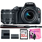 Canon EOS Rebel SL2 Digital SLR Camera Body with Canon EF-S 18-55mm f/4-5.6 IS STM Lens - (WiFi Enabled) + Camera Works Premium Cleaning Solution + 32GB High-Speed Memory Card