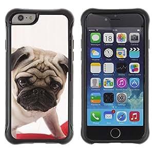 ZETECH CASES / Apple Iphone 6 PLUS 5.5 / PUG BRITISH PUPPY DOG BREED CANINE / pug británicos perrito perro raza canino / Robusto Caso Carcaso Billetera Shell Armor Funda Case Cover Slim Armor
