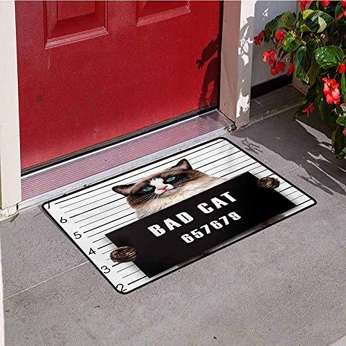 Cat Inlet Outdoor Door mat Bad Gang Cat in Jail Kitty Under Arrest Criminal Prisoner Hangover Artsy Work Catch dust Snow and mud W31.5 x L47.2 Inch Brown Black White