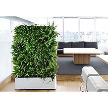 Interior Impermeable 12bolsillo vertical Living Muralla Verde Maceta