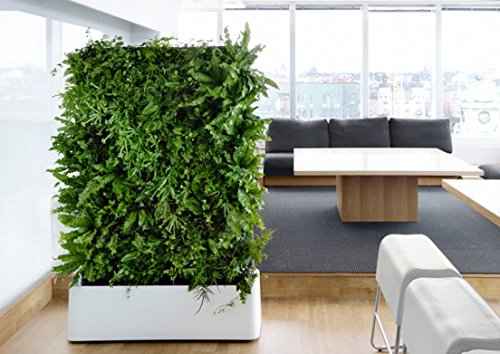 Indoor Vertical Garden Amazoncom