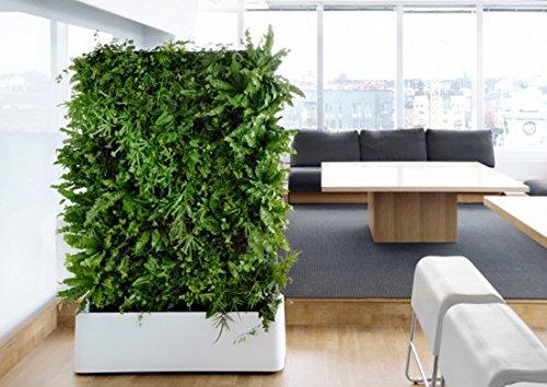 Indoor Vertical Garden Amazoncom .
