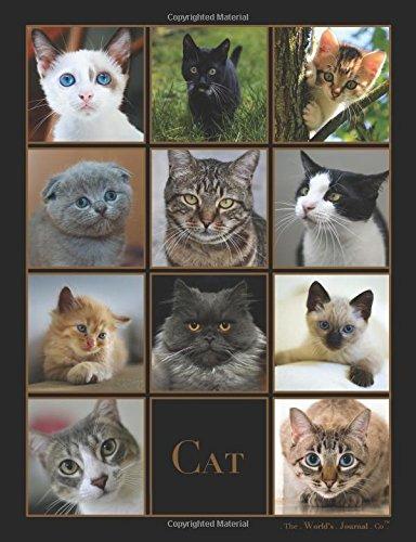 Cat: Journal