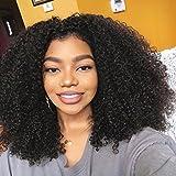 Afro Wigs for Black Women Human Hair 180% Density Lace Front Wigs Human Hair With Baby Hair(18'' Lace Front Wig)