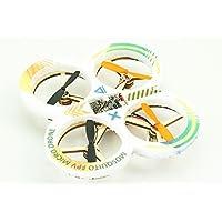 RC Micro Mini Multirotor FPV Quadcopter Racing Drone 100 Class RC Mosquito Kit + Motor + Prop + Flight Controller