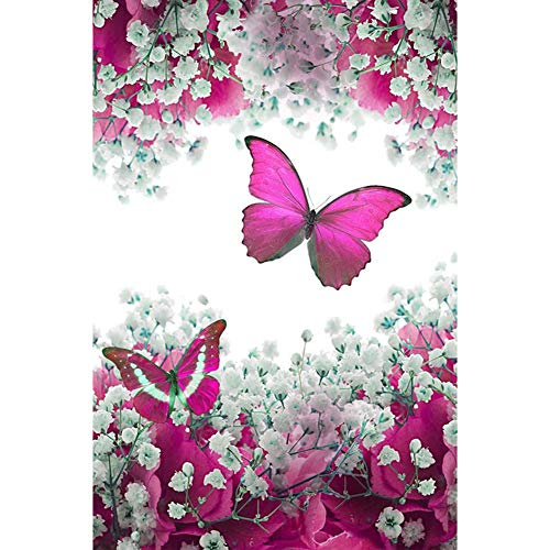 Avton DIY 5D Diamond Painting Rose Red & White by Number Kits, Painting Cross Stitch Full Drill Crystal Rhinestone Embroidery Pictures Arts Craft for Home Wall Decor Gift -12x16in ()
