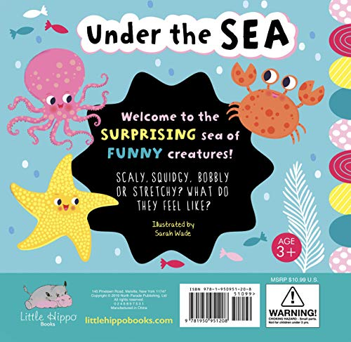 Under the Sea: A Touch and Feel Book - Children's Novelty Book - Silicone Elements