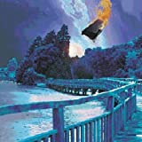Stars Die: the Delerium Years 1991-1997 by Porcupine Tree (2002-04-30)