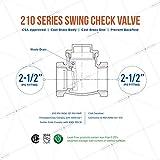 Midline Valve 432U434 Swing Check Valve, Backflow