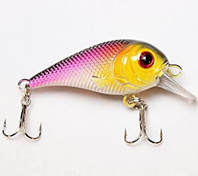 LotFancy 30 PCS Fishing Lures Crankbaits with Treble Hook Topwater Baits, Bass Minnow Popper Walleye Baits, Length from 1.57 to 3.66 inches