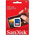 10 Piece SanDisk SDSDB-008G 8GB SDHC Class 4 SD sdhc flash Memory Card for DSLR Camera Nikon Canon 5 SDHC cards are fully compatible with all SDHC-compliant devices Writeable label for easy identification and organization Security: Built-in write-protect switch prevents accidental data loss