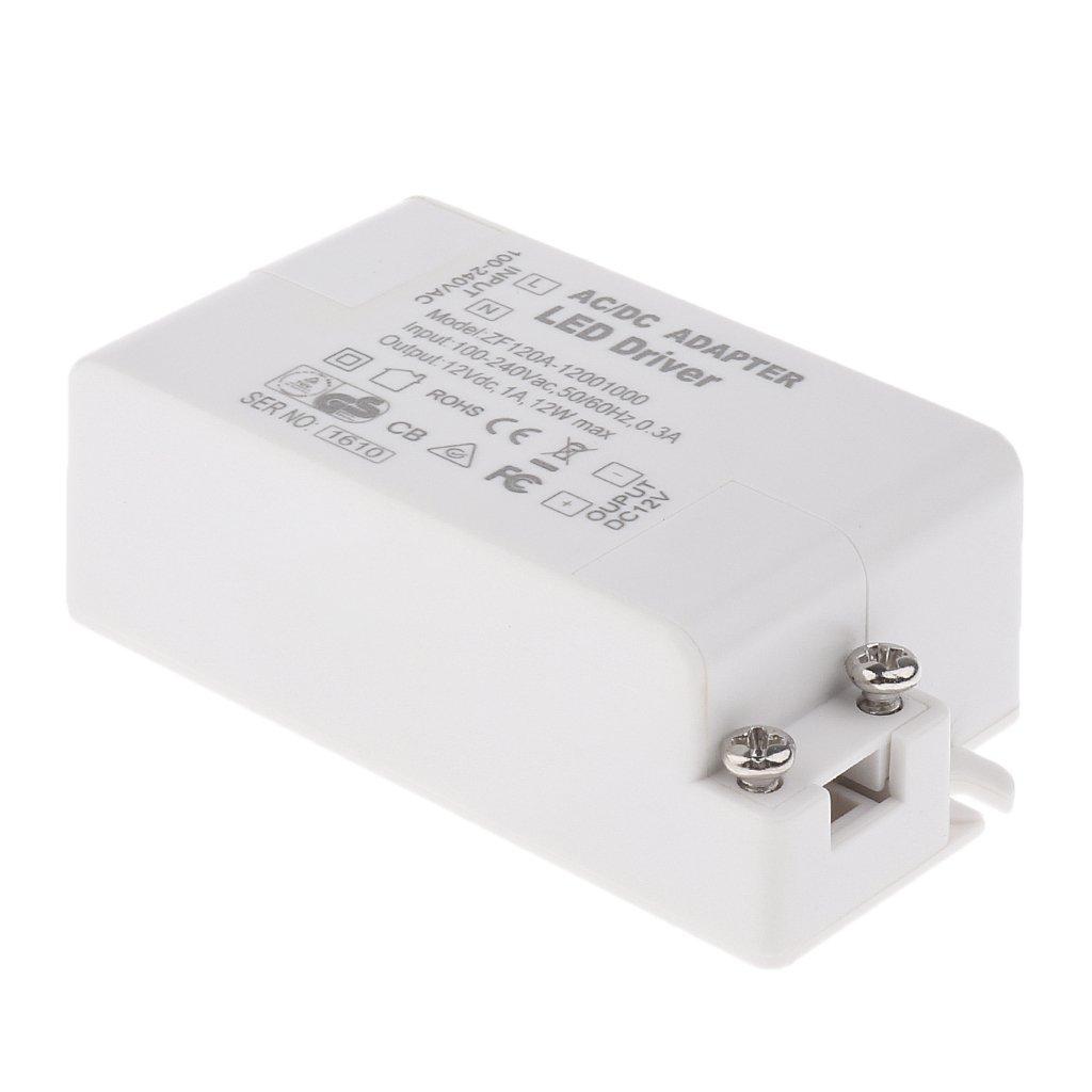 Baoblaze Adaptateur d'Alimentation Transformateur pour Lampe LED AC 100-240V à DC 12V 12W