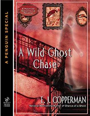 book cover of A Wild Ghost Chase