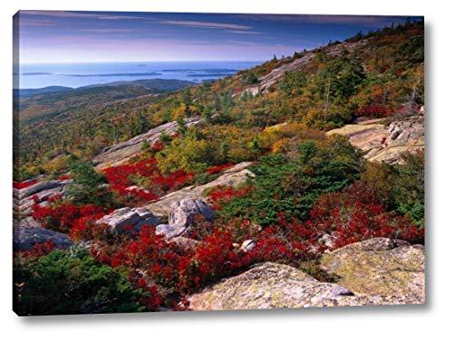 (Atlantic Coast from Cadillac Mountain, Acadia National Park, Maine by Tim Fitzharris - 20