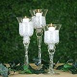 Efavormart Set of 3 Hurricane Long Stem Glass Candle Holders