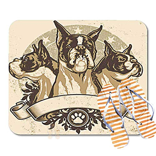 Bathroom Rugs for Bath Mat Boxer Crest of Three Purebred Dogs Front View Profile and Sitting Proudly Over, Non Slip Bath Rug Velvet Foam Bathroom mat for Shower Floors 15.7X23.6Inch 2F2296