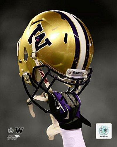 Washington Huskies Helmet Spotlight Photo (Size: 8