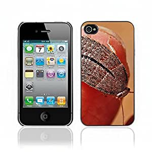 Kellie-Diy Hot Style cell phone PC case cover // Cockroach // Apple Iphone 4 4S JbmzTd4Gk0W