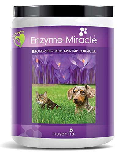 Enzymes for Dogs & Cats – Enzyme Miracle – Systemic & Digestive Enzyme Formula – Powder – 364 Servings – Vegetarian