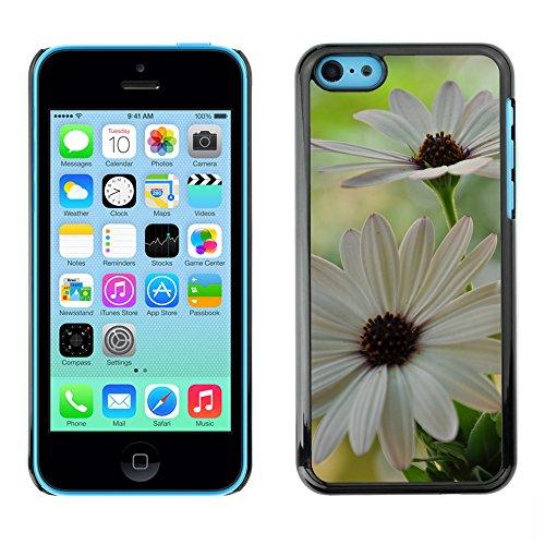 Premio Sottile Slim Cassa Custodia Case Cover Shell // F00004524 fleurs // Apple iPhone 5C