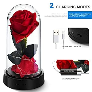 ucho Beauty and The Beast Rose,Enchanted Rose Lamp with Petals Last Forever & LED Light,Forever Rose in Dome for Home Decor Holiday Party Anniversary Wedding 2