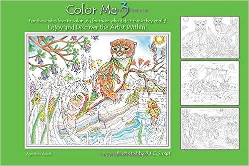 amazoncom color me your way 3 9781467572125 pamela smart books - Color Me Books