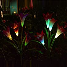 Chasgo Solar Garden Stake Lights - 2PCS Multi-Color Changing Lily Flowers Light