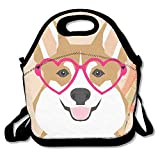 Welsh Corgi Lunch Tote Insulated Reusable Picnic Lunch Bags Boxes For Men Women Adults Kids Toddler Nurses
