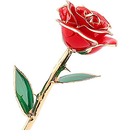 ZJchao Love Forever Long Stem Dipped 24k Gold Foil Trim Rose, Best Gift for Valentine's Day, Mother's Day, Anniversary, Birthday Gift (Red)