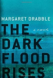 The Dark Flood Rises: A Novel