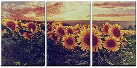 Sunflower Field at Sundown Wall Decor x3 Panels