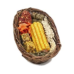 Boredom Breaker Naturals Treats Willow Treat Basket