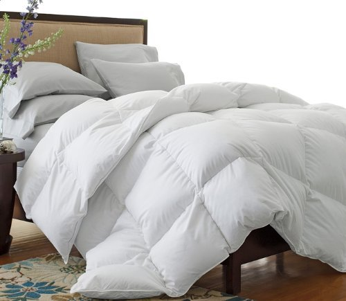1200 Thread Count Full / Queen Size 1200TC Goose Down Alternative Comforter, 100% Egyptian Cotton, 750FP, White 1200 TC