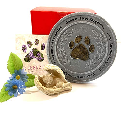 Cat Memorial, Gone But Not Forgotten, Pet Loss for Cat Owner, Paw Print Stepping Stone, Angel Cat Figure, Forget-Me-Not Seeds, Family Pet Remembrance Sympathy Keepsake Gift for Garden or Yard