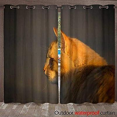 WinfreyDecor Outdoor Curtain for Patio Orange Tabby Cat