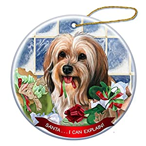 Sable Tibetan Terrier Dog Porcelain Hanging Ornament Pet Gift 'Santa.. I Can Explain!' for Christmas Tree and Year Round 8