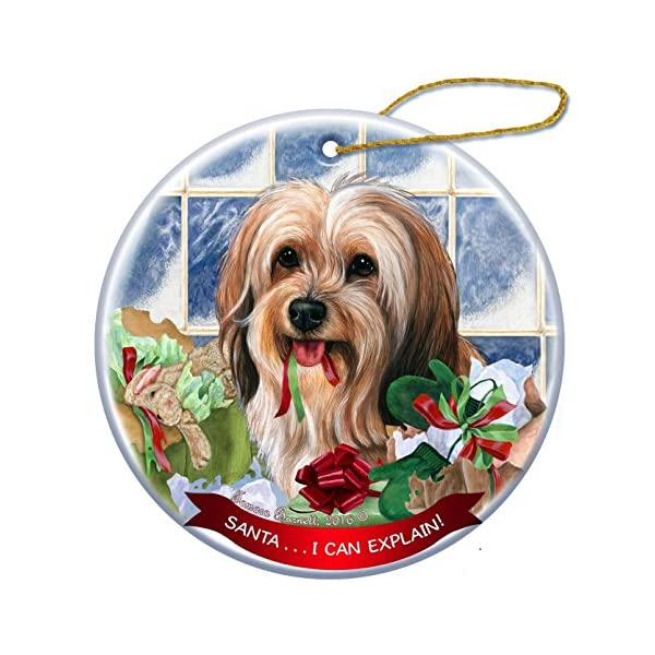 Sable Tibetan Terrier Dog Porcelain Hanging Ornament Pet Gift 'Santa.. I Can Explain!' for Christmas Tree and Year Round 1