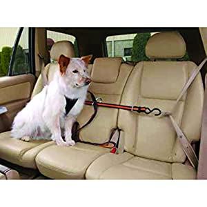 Kurgo Dog Seat Belt Pet Safety Vehicle Seatbelt Harness, Adjustable Length 79