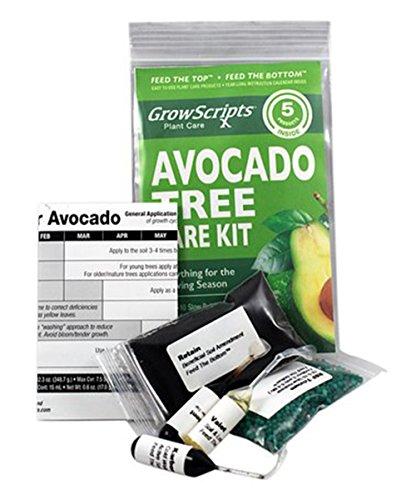 - 5-Pc. Avocado Tree Care Kit for Small Trees